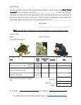 School Visit-Susan Ring - Sylvan Dell Publishing - Page 3