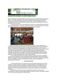 Prefeitura incentiva o plantio de pupunha - Sementes Caiçara