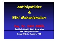 Antibiyotikler & Etki Mekanizmaları - Çanakkale Onsekiz Mart ...