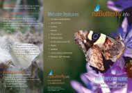 Printable Identification Guide - NZ Butterfly Info