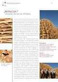 Faszinierende Holzbauten - Holzbau-Cluster Rheinland-Pfalz - Seite 6