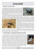 OÁZA č. 3/2009 - pdf ke stažení - Podkrušnohorský Zoopark Chomutov - Page 2