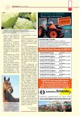 Alte Pferde im Winter - Seite 7