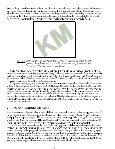 1 Introduction, Problem Definition - Vincent-Net - Page 2