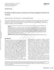 Evolution of β-lactams resistance in Gram-negative bacteria in Tunisia