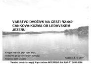 varstvo dvoživk na cesti r2-440 cankova-kuzma ob ledavskem jezeru