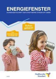 Ausgabe 1 2011 Energiefenster - Stadtwerke Staßfurt GmbH