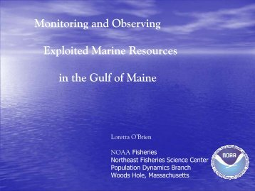 Monitoring and Observing Exploited Marine Resources in ... - rargom