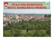 VÍTAJÍ VÁS BOSKOVICE - Národní síť Zdravých měst ČR