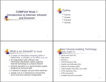 internet intranet extranet