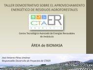 Área de Biomasa - Altercexa