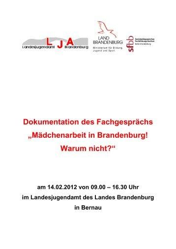 Dokumentation des Fachgesprächs - Landesjugendamt des Landes ...