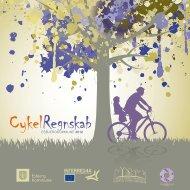 Cykelregnskab 2012 - Cykler uden grænser