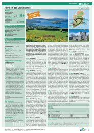 IRLAND - Irish-net