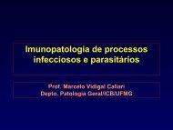 Introdução à Patologia Geral