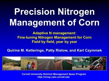 Precision Nitrogen Management of Corn - Cornell University ...
