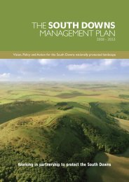 the south downs management plan - South Downs National Park ...