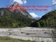 VO NB 2 2011 Nachhaltige ... - Alpwirtschaft.com