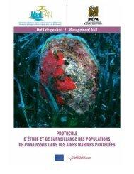 Télécharger-Protocole d'étude et de surveillance des populations de ...