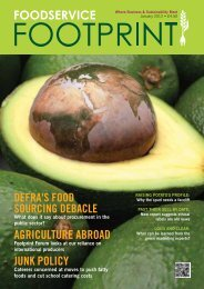 Issue 14 - Foodservice Footprint