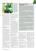 IIBkh - Page 3