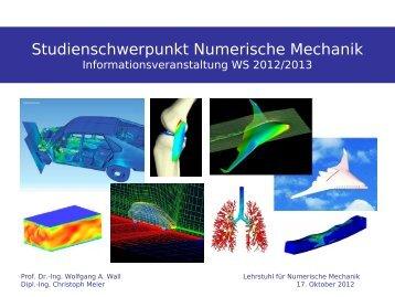 3 SWS - Lehrstuhl für Numerische Mechanik -  TUM
