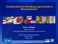 Considerations for Handling Large Animals in Biocontainment