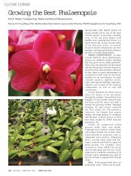 Growing the Best Phalaenopsis - Michigan State University