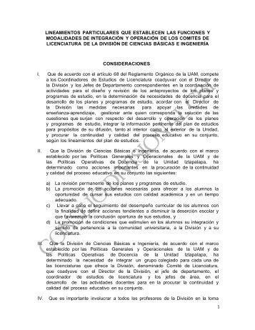 28. lineamientos particulares que establecen las ... - CBI - UAM