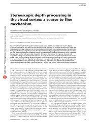 Stereoscopic depth processing in the visual cortex: a coarse-to-fine ...