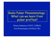 Radio Pulsar Phenomenology: What can we learn from pulsar profiles?
