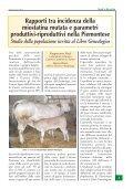anaborapi anaborapi - Associazione Nazionale Allevatori Bovini di ... - Page 3