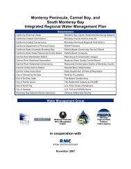 IRWM Plan (November 2007) (2.9 Mb PDF) - Monterey Peninsula ...