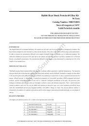 Rabbit Heat Shock Protein 60 Elisa Kit - MyBioSource