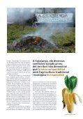 Els transgènics: aliments manipulats genèticament - Raco - Page 2