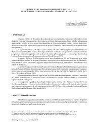 DETECÇÃO DE EM ORTOFOTOS DIGITAIS ... - Instituto Florestal