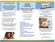 Triple P Positive Parenting Program Brochure - Windsor-Essex ...