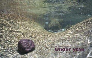 CN1-07 Sid 08-17 Under ytan - Tina Thelenius