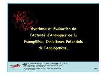 Cours P3- opt industrie - fumagilline - 2009