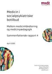 Sammenfattende rapport - Region Midtjylland