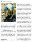 MIDDLE ISLAND RESOURCES - The International Resource Journal - Page 6