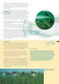 dredging: the facts - Central Dredging Association - Page 7