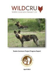 full report - Saving Big Cats and Wild Dogs