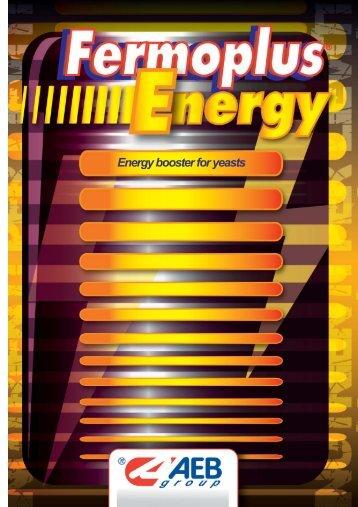 FERMOPLUS ENERGY.pdf - SWAT