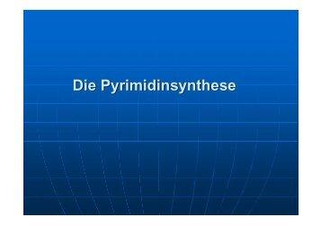 Die Pyrimidinsynthese - Biochemie-trainings-camp.de
