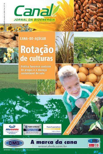 cana-de-açúcar - Canal : O jornal da bioenergia