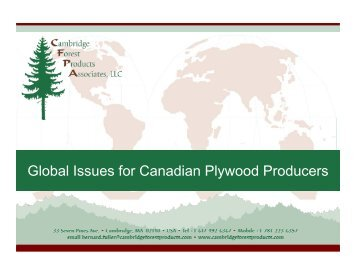 Global Issues for Canadian Plywood Producers
