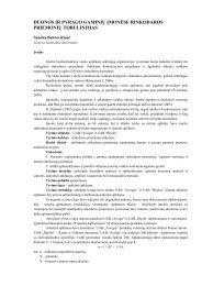 aktyvaus prekybininko pro sistemos reikalavimai)