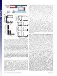 Drosophila Eukaryotic operon-like transcription of functionally ... - Page 4
