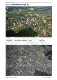 01_Muri_Freiamt_PrintQuality.pdf - Luftbilder der Schweiz